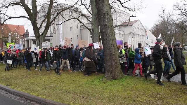 """Fridays for Future"": Klimaschutz-Demonstrationen in ganz MV (15.03.2019)"